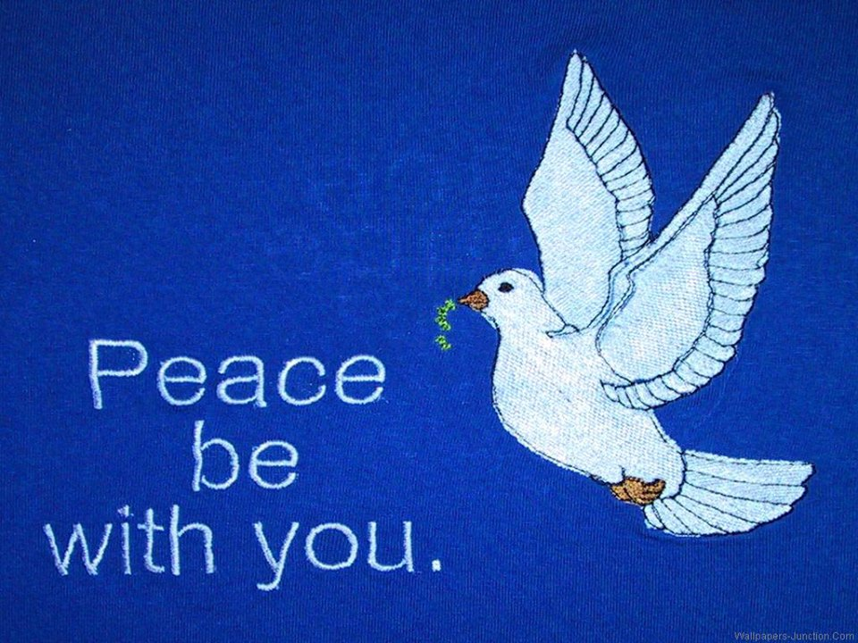 2013 month of peace